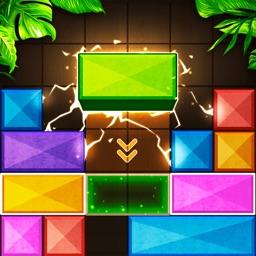 Wooden Blast - Block Puzzle