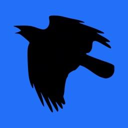 CrowFlies