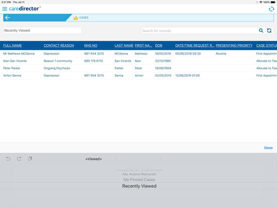 CareDirector screenshot #2