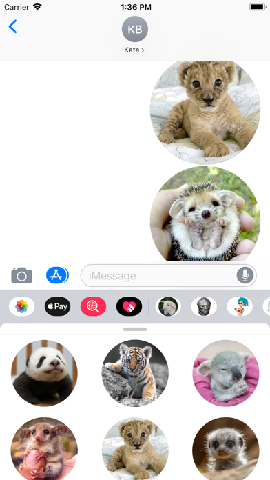 Screenshot for Animal Babies Sticker Pack in United States App Store