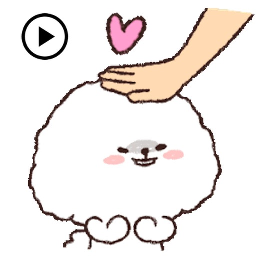 Animated Fluffy Bichon Frise