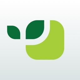 Vivus.ru займы онлайн на карту