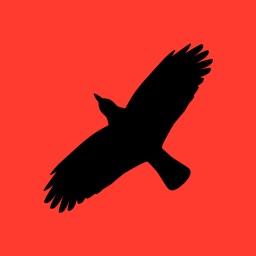 Condor Operations