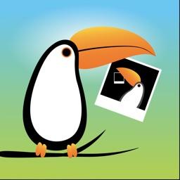 dodo - remove duplicate photos