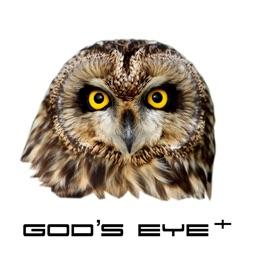 God's eye +