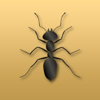 Codes for Disturbing Ants Hack
