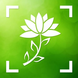 Flower & Plant Identification