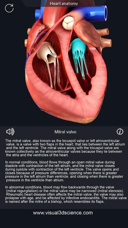 My Heart Anatomy screenshot-3