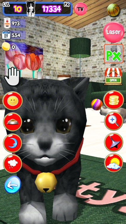 KittyZ, my virtual pet