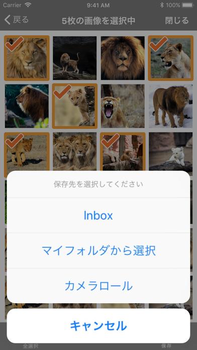 DL-Picture 画像検索紹介画像2