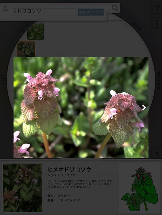 リング図鑑 《植物》 screenshot-3