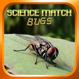 Science Match Bugs