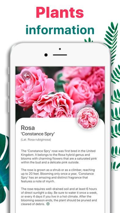 Plant Identifier - Leaf Snap screenshot 3