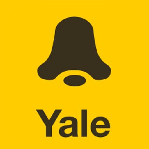 Yale Look
