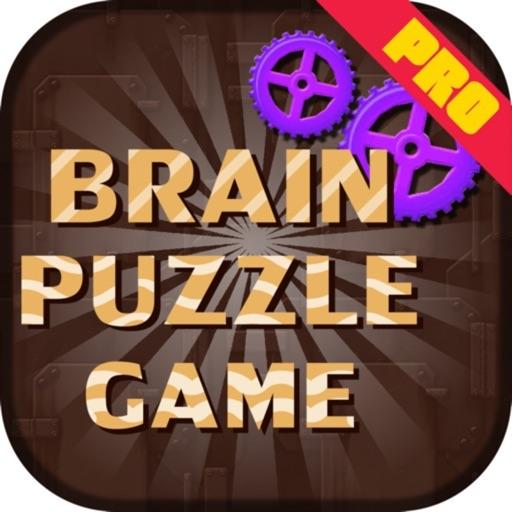 Brain Puzzles Game Pro