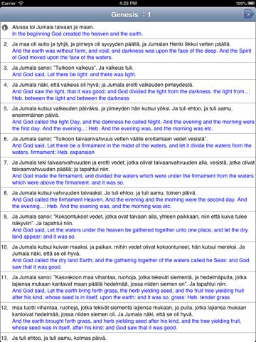 Raamatun lukeminen - náhled
