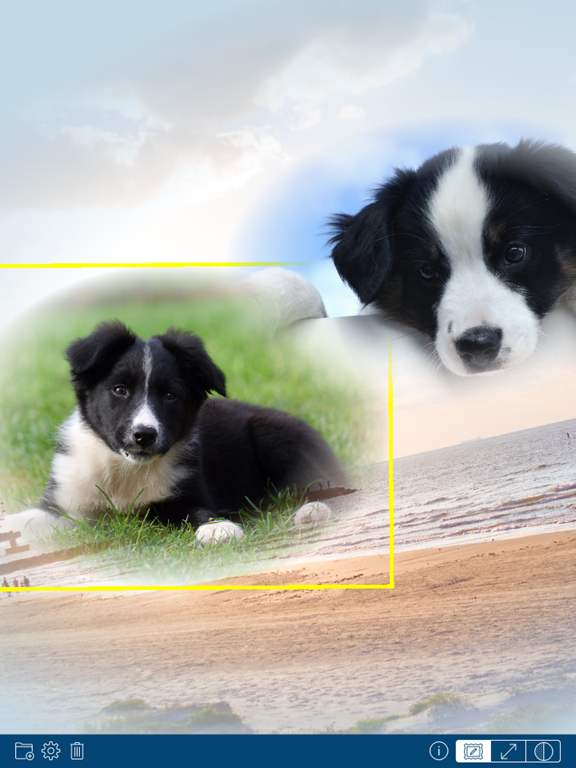PhotoTangler Collage Maker screenshot