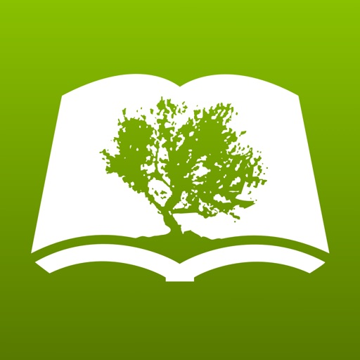 Bible by Olive Tree