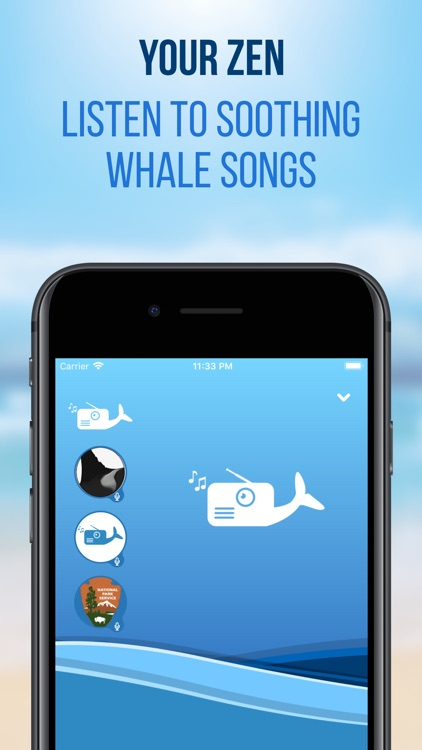 Whale Radio