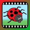 Video Touch - Bugs & Insects - iPadアプリ