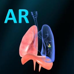 AR Respiratory system physiolo