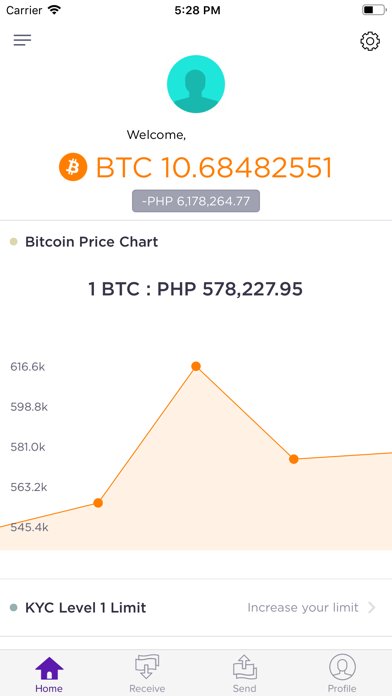 Bitbit - Bitcoin & Cash Wallet screenshot two