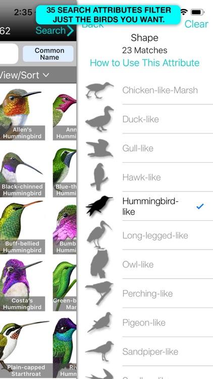iBird Ultimate Guide to Birds screenshot-7