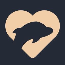 海豚婚恋-视频相亲交友平台