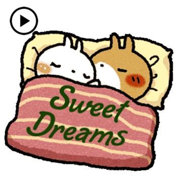 Animated Lovely Rabbit Couple Logo