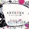 ANTEnNA HairResort(アンテナヘアリゾート)