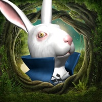 Codes for Alice in Wonderland AR quest Hack