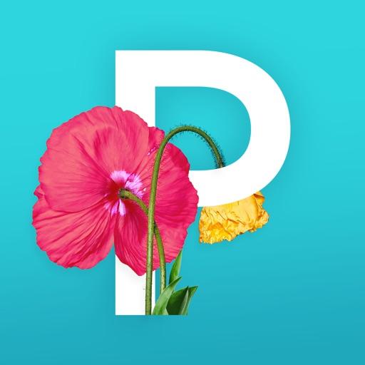 Picolla - Be Bohemian