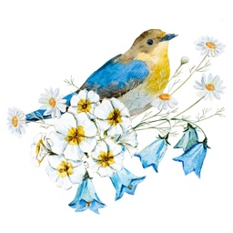 Vintage Birds & Floral Sticker