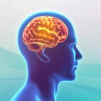 Knowledge Trainer: Trivia free Resources hack