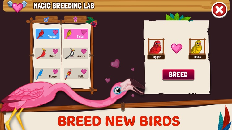 Bird Land: Pet Simulation Game