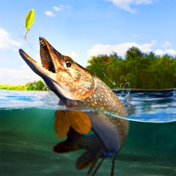 TAP SPORTS Fishing Game