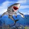 القرش البقاء على قيد الحياة