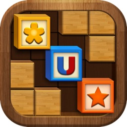 Wood Block Puzzle*