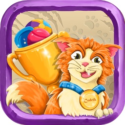 Kitty Champion - Game for Cats