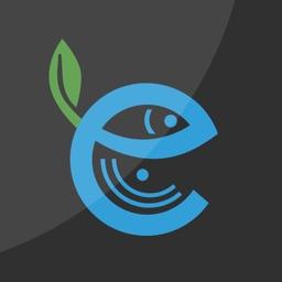 Eco Popper - Live Video Lure