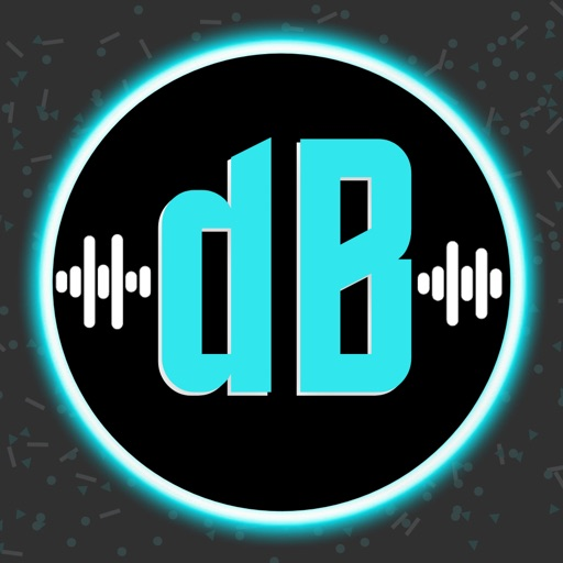 Decibel Sound Meter   dB Level