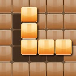 Wooden 100 Block - Hexa Puzzle