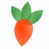 Gartenplaner fürs Gemüsebeet