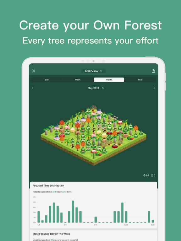 Forest - Restez Concentré