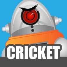 Activities of Robot Cricket