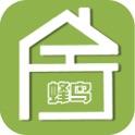 Shijiazhuang dingteng network technology co. LTD. - Logo