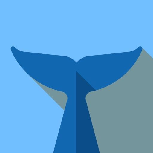 Flipper - Mirror Image Editor icon