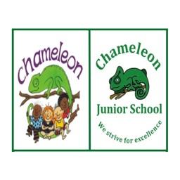Chameleon School Group
