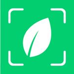 Plantyx: Plante, Fleur, Arbre pour pc