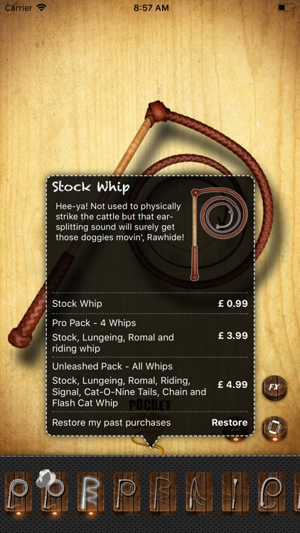Pocket Whip screenshot-3